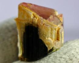 63.10CT 100% Natural  Pink  cap Tourmaline Crystal Rough