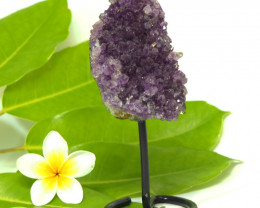 1515 Cts Amethyst Druze Specimen on Stand CF 267