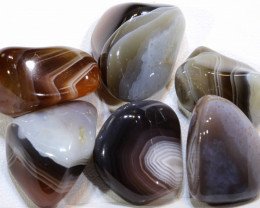119.75 CTS BANDED AGATE 6 STONES  ADG-238