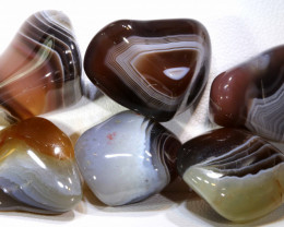 128 CTS BANDED AGATE 6 STONES ADG-243