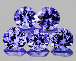 3.20 mm Round 5 pcs Unheated Purplish-Blue Sapphire [VVS]
