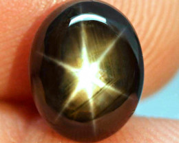 6.52 Carat Thailand Black Star Sapphire - Gorgeous