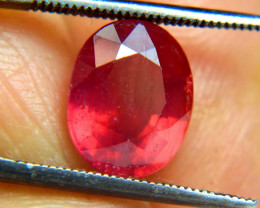 3.31 Carat Top Fire Red Ruby - Gorgeous