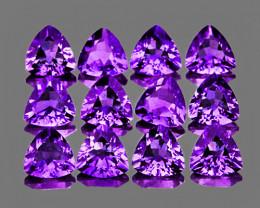 4.00 mm Trillion 12 pcs 2.42cts Purple Amethyst [IF-VVS]