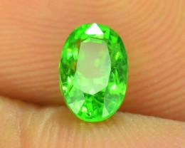AAA Grade 0.75 ct Forest Green Tsavorite Garnet