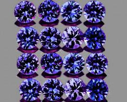 2.40 mm Round 16 pcs 1.10cts Purple Sapphire [VVS]