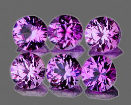 3.00 mm Round 6 pcs Unheated Purple Sapphire [VVS]