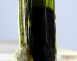 15.00 CT Natural  Beautiful Green Cap Tourmaline Crystal