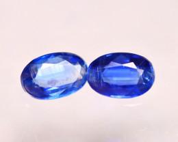 Kyanite 1.10Ct 2Pcs Natural Himalayan Royal Blue Color Kyanite E1717