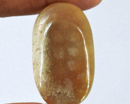 Genuine  41.00 cts  Coral Fossil Oval Shape Cabochon V100