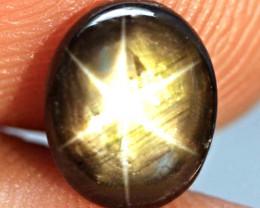3.25 Carat Thailand Natural Black Star Sapphire - Gorgeous