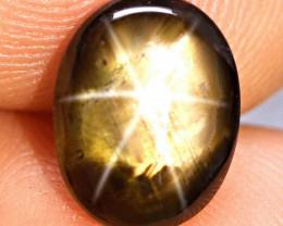 4.99 Carat Thailand Fancy Black Star Sapphire - Gorgeous
