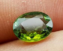1.25Crt Tourmaline Natural Gemstones JI101