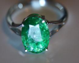 Emerald 3.29ct Solid 18K White Gold Solitaire Ring    Size 7.25