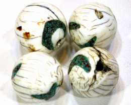 113 CTS SHELL BEADS ( 2 PAIR) ADG-420