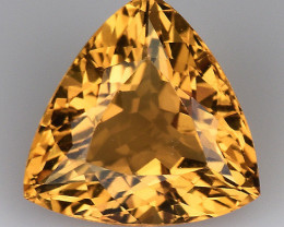 1.50 Ct Natural Beryl AAA Grade Top Quality Gemstone. HD 17