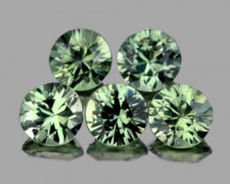 3.40 mm Round 5 pcs Green Sapphire [VVS]