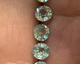 Five  Sparkling Blue Zircon gems - 4.9mm No reserve ~