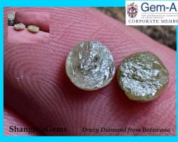 5.4mm 1.25ct Ivory white Druzy Raw Diamond Pair 5.4 by 2.2mm