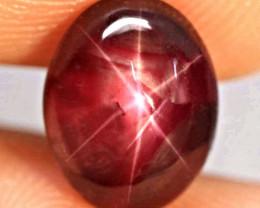 4.97 Carat Fiery Star Ruby - Gorgeous