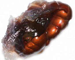 38.10 CTS FIRE AGATE NATURAL SPECIMEN  [MGW5561]