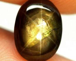 4.17 Ct Genuine Thailand Black Star Sapphire - Gorgeous