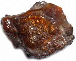 103.65 CTS FIRE AGATE NATURAL SPECIMEN  [MGW5598]