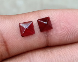 Fancy Cut Natural Garnet Pair Natural+Untreated VA1180