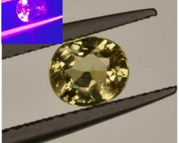 AIG ~ 0.64 Cts Alexandrite Chrysoberyl