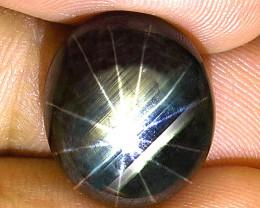 24.28 Carat 12 Ray Thailand Black Star Sapphire - Gorgeous