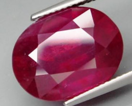 14.50 Cts. Top Quality Blood Red Natural Ruby Madagascar Gem