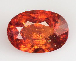 1.44 Cts AAA Spessartite Open Color and Untreated TS14