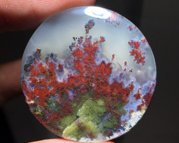 46.85 CT GORGEOUS MOSS AGATE TREE PICTURE FROM INDONESIA