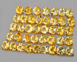 1.70 mm Round 50 pcs 1.05cts Golden Yellow Citrine [VVS]