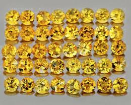 0.80 mm Round 100pcs Golden Yellow Citrine [VVS]