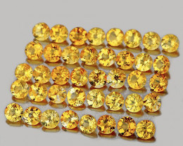 1.80 mm Round 50 pcs 1.13cts Golden Yellow Citrine [VVS}