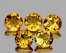 7.00 mm Round 5 pcs 6.10cts Golden Yellow Citrine [VVS]