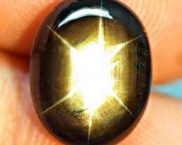 9.02 Ct. Thailand Black Star Sapphire - Gorgeous