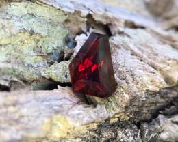 Freeform Garnet - 9.98 carats