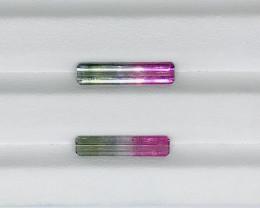 5 Carats 2 Pieces Bi Color Tourmaline Gemstones