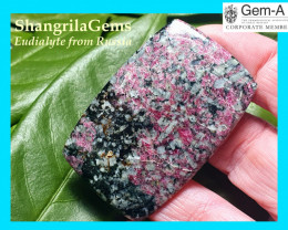 54mm Eudialyte red black cabochon AAA quality 86ct 54 by 35 by 5mm