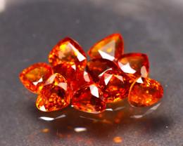 Garnet 7.21Ct 11Pcs Natural Vivid Orange Spessartite Garnet ER41/B34