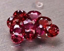 Rhodolite 8.52Ct 10Pcs Natural Red Rhodolite Garnet ER45/B2