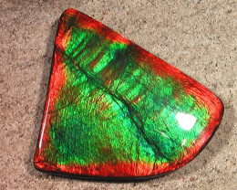 FLAWLESS COLLECTOR Top TOP Quality Natural Ammolite Gem BIG