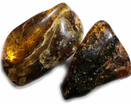 234 Cts Pair Tumbled Polished Rough Amber  AM 1749