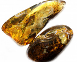 232 Cts Pair Tumbled Polished Rough Amber  AM 1751