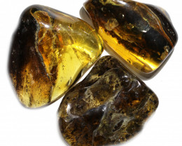 225 Cts Parcel 3 Tumbled Polished Rough Amber  AM 1757