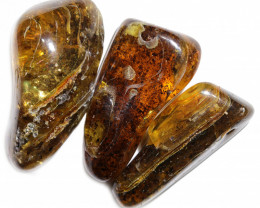 292 Cts Parcel 3 Tumbled Polished Rough Amber  AM 1759
