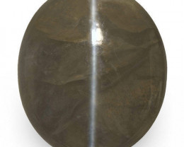 IGI Certified India Chrysoberyl Cat's Eye, 25.38 Carats, Oval