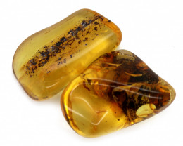 125 Cts Pair Tumbled Polished Rough Amber  AM 1780